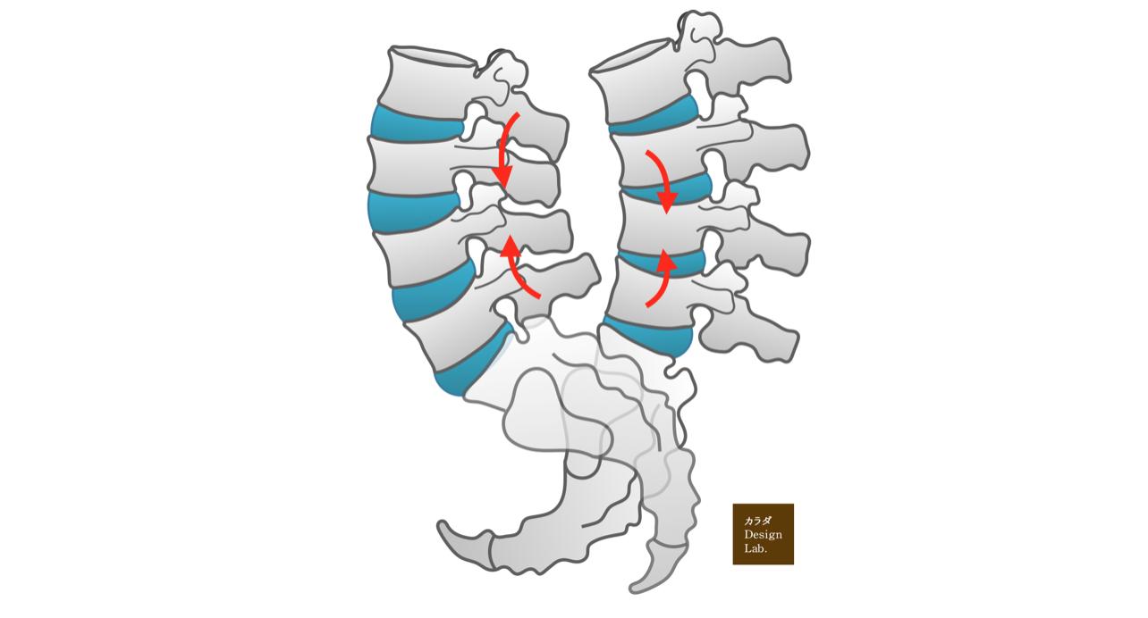 腰椎と仙骨の動き